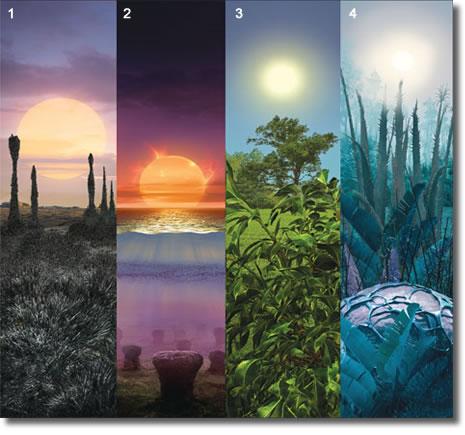 Цвет растений на планетах вне Солнечной системы может быть и желтым, и красным, и даже черным